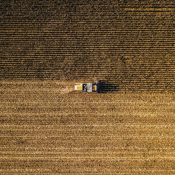 Creación de empresas agrarias
